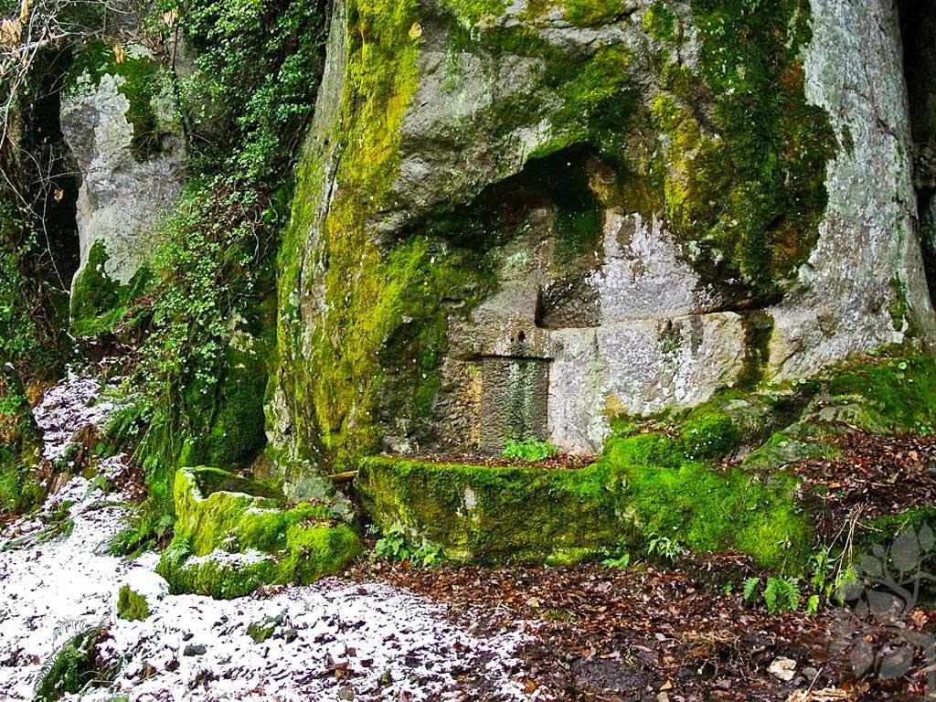 Il complesso di canalizzazioni e vasche, scavati nella roccia.